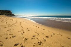 Royal National Park Royalty Free Stock Images