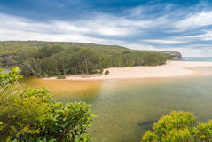 Royal National Park landscape near Sydney , New South Wales, Australia.  royalty free stock images