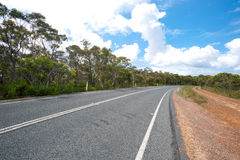 Royal National Park Road - NSW, Australia Royalty Free Stock Photo