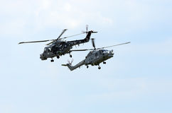 Royal Navy Black Cats Royalty Free Stock Images