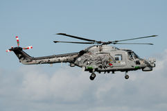 Royal Navy Lynk Black Cat Stock Photos