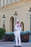 Royal palace guard, monaco ,France Royalty Free Stock Image