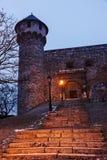 Royal Palace na noite do inverno Foto de Stock