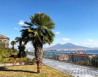 Royal Palace of Naples, Italy royalty free stock image