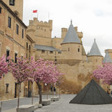 Royal Palace of Olite, Spain Royalty Free Stock Photography