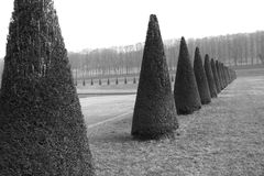 Royal park in France Stock Photography