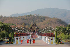 Royal park rajapruek. A wide variety of garden plants and orchids in Chiangmai of Thailand Royalty Free Stock Photography