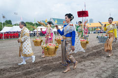 The Royal Plowing Ceremony in Thailand. Royalty Free Stock Photos
