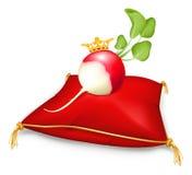 Royal radish Royalty Free Stock Photo