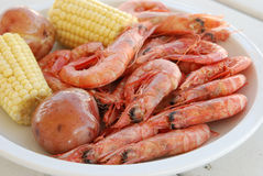 Royal Reds Shrimp Royalty Free Stock Photography