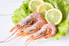 Royal shrimps with lemon wedges and green salad Stock Photo