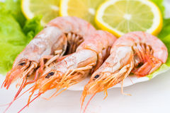 Royal shrimps with lemon wedges and green salad Stock Photography
