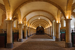 Royal Stables in Cordoba. Arched interior of the 16th century Royal Stables in Cordoba, Andalusia, Spain Royalty Free Stock Photography