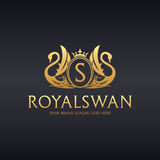 Royal Swan logo. Logo template suitable for businesses and product names. Easy to edit, change size, color and text Royalty Free Stock Photos