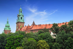 Royal Wawel Castle in Cracow Royalty Free Stock Images