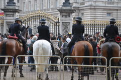Royal Wedding - Police horses Royalty Free Stock Photos