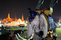 Royal white elephant at Thai King's birthday, a. Bangkok, Thailand - 5 December 2014: Royal white elephant in front of Grand Palace on Sanam Luang to celebrate stock photo