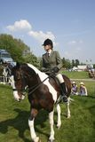 Royal Windsor Horse Show Royalty Free Stock Photo
