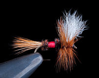 Royal Wulff Dry Fly. Famous dry fly called a Royal Wulff on a black background Royalty Free Stock Photography