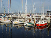 Royal Yacht Club of Tasmania Stock Image
