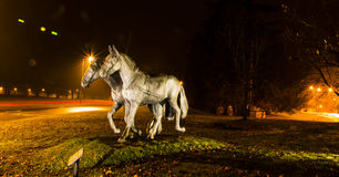 Royals` favourite horses.  Royalty Free Stock Photography