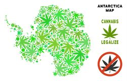 Royalty Free Cannabis Leaves Collage Antarctica Map. Royalty free cannabis Antarctica map collage of weed leaves. Template for narcotic addiction campaign stock illustration