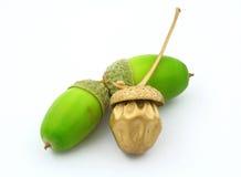 Royalty metaphor. Three acorns on white background, perfect metaphor of royalty/luxury Royalty Free Stock Photo
