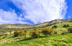 Roys szczyt blisko Wanaka obraz royalty free