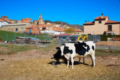 Royuela village Sierra de Albarracin Teruel Spain Royalty Free Stock Image