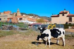 Royuela village Sierra de Albarracin Teruel Spain Stock Image