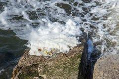 Rozładowanie brudny przemysłowy wastewater w morze Truć rekreacyjny teren rozszerzaniem się choroba, zniszczenie flora i obraz stock