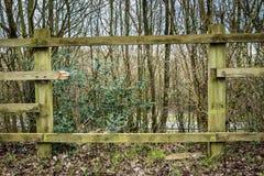 rozbite ogrodzenie Zdjęcie Royalty Free