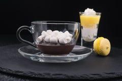 Rozciekła czekolada i marshmallow Obraz Stock