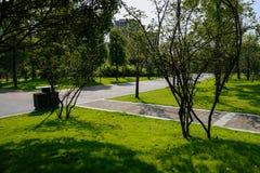 Rozdroże w roślinach i drzewach przed mieszkaniami w pogodnym lecie zdjęcia stock