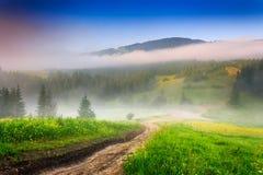 Rozdroża w ranek mgle w górach Zdjęcia Stock