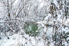 Rozdziela zamarzniętego staw i ścieżkę wokoło go w zimie Zdjęcia Royalty Free