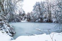 Rozdziela zamarzniętego staw i ścieżkę wokoło go w zimie Obraz Royalty Free