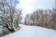 Rozdziela zamarzniętego staw i ścieżkę wokoło go w zimie Zdjęcie Stock