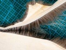 Rozdzielenie krawędź rżnięty futerko obrzuca obraz stock