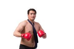 Rozdzierający biznesmen z bokserskimi rękawiczkami odizolowywać na bielu Obraz Royalty Free