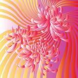 Roze achtergrond met bloemen Royalty-vrije Stock Afbeeldingen