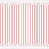 Roze achtergrond met kantgrens Stock Afbeeldingen