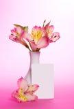 Roze alstroemeria in vaas stock afbeeldingen