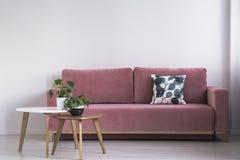 Roze bank met een gevormd hoofdkussen en twee koffietafels met installaties op een witte muur in een woonkamerbinnenland Echte fo stock foto