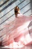 Roze bevroren zwaankleding, ogenblik royalty-vrije stock afbeeldingen