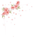 Roze bloem en bloemblaadje royalty-vrije illustratie