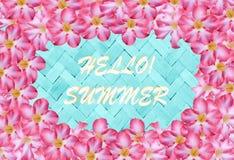 Roze bloem en de blauwe zomer van het bamboeweefsel, vakantiebanner backg Royalty-vrije Stock Foto