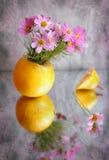 Roze bloem en peer Royalty-vrije Stock Afbeeldingen