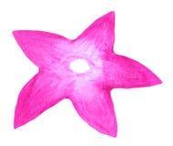 Roze bloem in waterverf stock illustratie