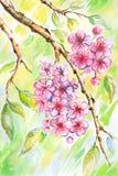 Roze bloemen vector illustratie